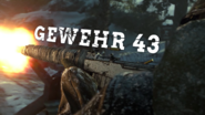 Gewehr 43 Title WWII
