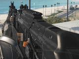 Volk (weapon)/Variants
