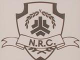 Нильская коалиция