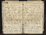 MariesJournal Entry2 1 ViralCampaign WWII