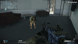 Сторожевой пёс без ника