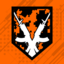 Doing Camo Right achievement icon BO3