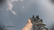 Remington R5 Tracker Irons CoDG