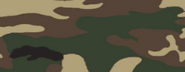 ERDL Camouflage menu icon BOII