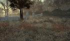 """Wasteland Sniper Spot 4 """"kpuca"""""""