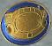 Blue Souvenir Coin HUD IW