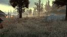Wasteland Graveyard