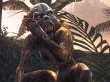 Małpa zombie