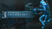 Operation Snowblind Promo BO3