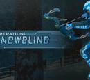 Operation Snowblind