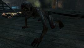 Kino crawler zombie