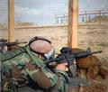 M4A1 M68 CoDG.png