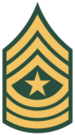 US Army OR-9