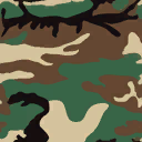 Weapon camo classic