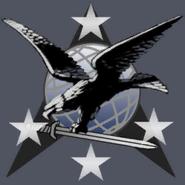 U.S. Navy SEALs unused emblem 1 MW3