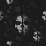 Ghosts Camouflage texture sheet BOII
