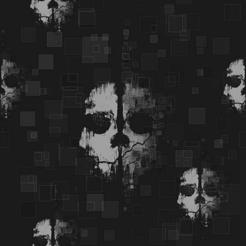 File:Ghosts Camouflage texture sheet BOII.png