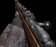 Mosin-Nagant CoD2