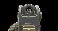 G r5 aim