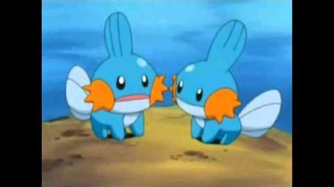 So I heard you like Mudkips? Dubkips? (FULL VERSION)