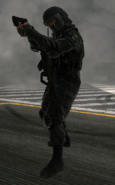 Internaltroops1
