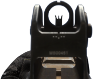 Remington R5 iron sights CoDG