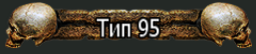 Тип 95(2)