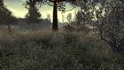 Wasteland Sniper Spot 13