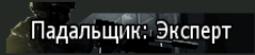 Пажальщик Экс
