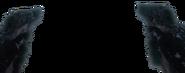 ASP dw