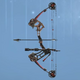 Compound Bow model CoDO