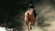 Horse Back BOII