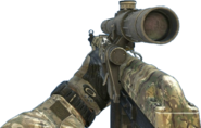 Dragunov Multicam MW3