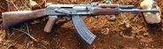 Personal Turzy310 AK-47