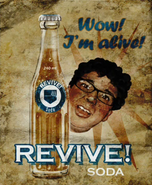 Quick Revive Poster WaW