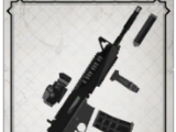 Primary Gunfighter