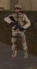 Sgt sears CoD4 DS