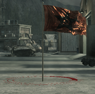 Ultranationalist flag CoD4