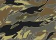 Platoon Camo Icon BO4