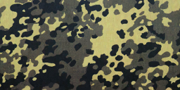 Flecktarn menu icon BOII