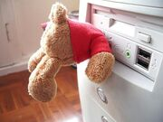 Infected32 Teddy Bear in a computer