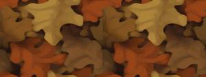 Autumn Camouflage MW3
