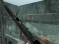 Gewehr 43 Engraved Bullet BO.png