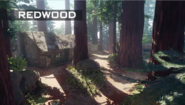 Redwood BO3
