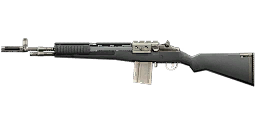 Weapon m14