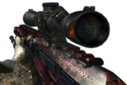 RSASS MW3 Red