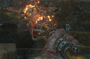 Staff of Fire BO3