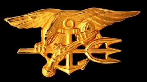 Call of Duty Modern Warfare 2 Navy SEALs Defeat Theme