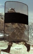 Riot Shield Akreg