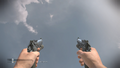 M9A1 Akimbo CoDG.png